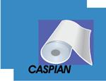 مجتمع کاغذسازی کاسپین